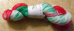 DSC03981