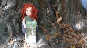 11-merida-in-the-redwoods